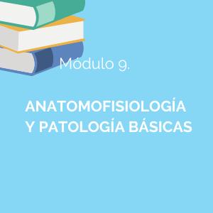 Conocerás la organización general del organismo, estudiando la célula, los diferentes tejidos y las estructuras anatómicas de cada aparato o sistema del cuerpo humano.